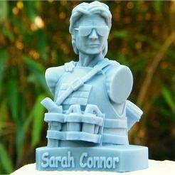 connor_resine_1_lt.JPG Download OBJ file Sarah connor optimized • 3D print object, 3d-fabric-jean-pierre