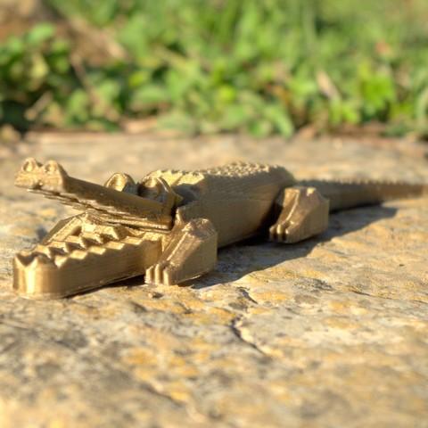 Crocodile_vue_2_carre.jpg Download STL file Pretty Crocodile • 3D printer object, 3d-fabric-jean-pierre