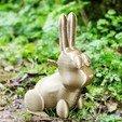 Télécharger objet 3D Cute Rabbit, 3d-fabric-jean-pierre