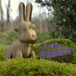 Objet 3D Cute Rabbit, 3d-fabric-jean-pierre