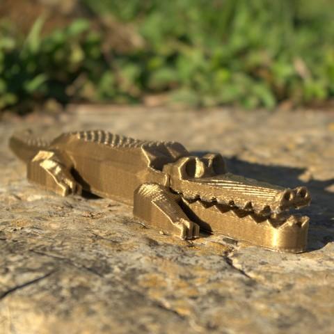 Crocodile_vue_1_carre.jpg Download STL file Pretty Crocodile • 3D printer object, 3d-fabric-jean-pierre