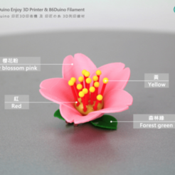 Download free 3D printer model Cherry blossoms / Flowers / Sakura, 86Duino