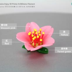 Descargar modelo 3D gratis Flores de cerezo / Flores / Sakura, 86Duino