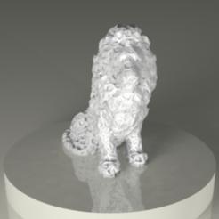 STL Lions, PLAmarket3D