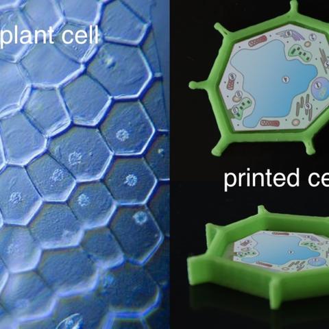 Capture d'écran 2017-05-04 à 12.31.55.png Download free STL file chemistry and biology kit • 3D printing template, JOHLINK