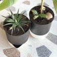 Download STL file Self Watering Planters • 3D printing template, VOOOD