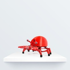 Download free 3D model PRINTBOT CRAB, BQ_3D