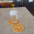Free stl file Citrus Fruit Slice Coaster, barb_3dprintny
