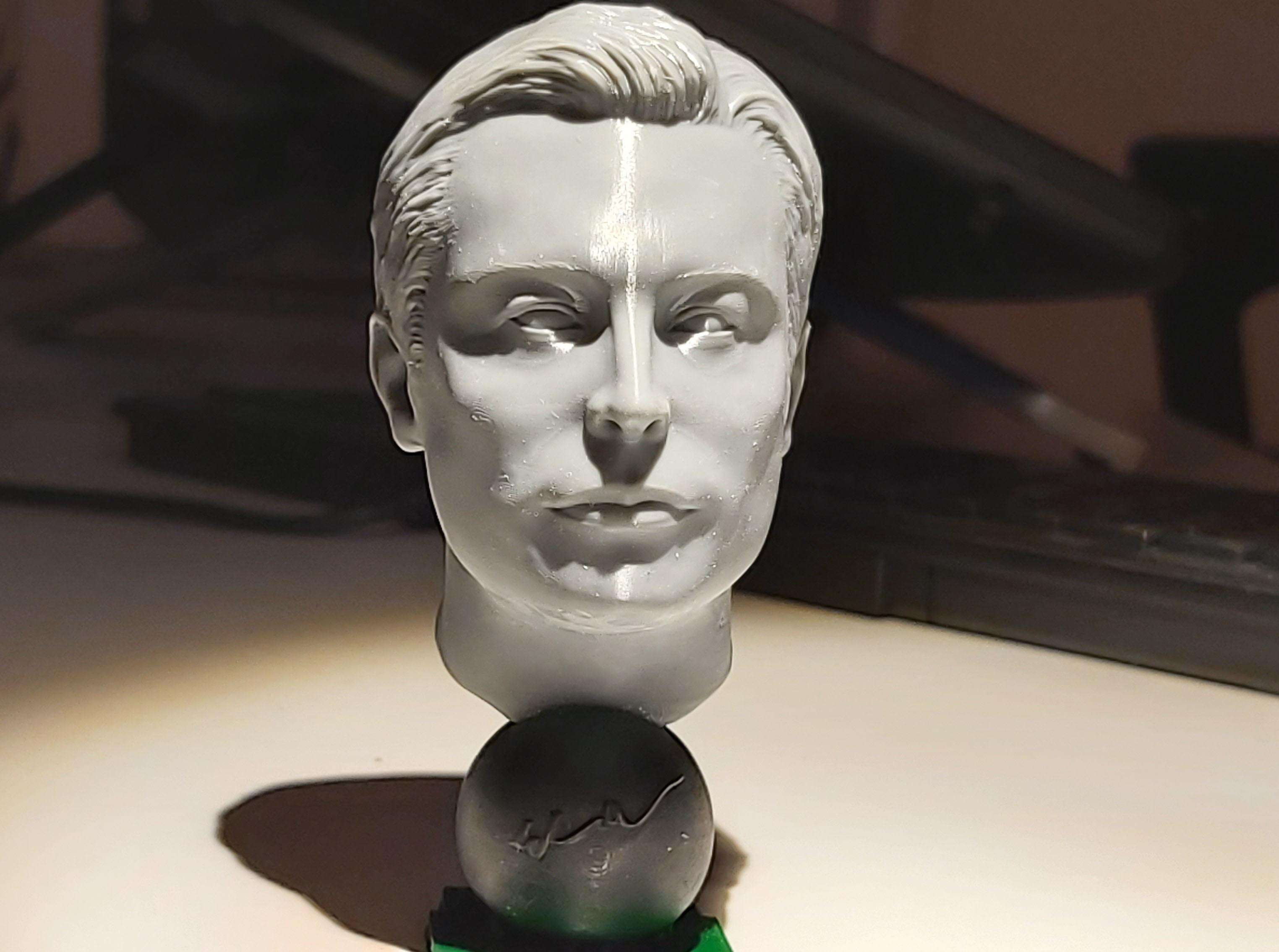 20191220_193748.jpg Télécharger fichier STL gratuit Musc Elon • Design imprimable en 3D, tutus