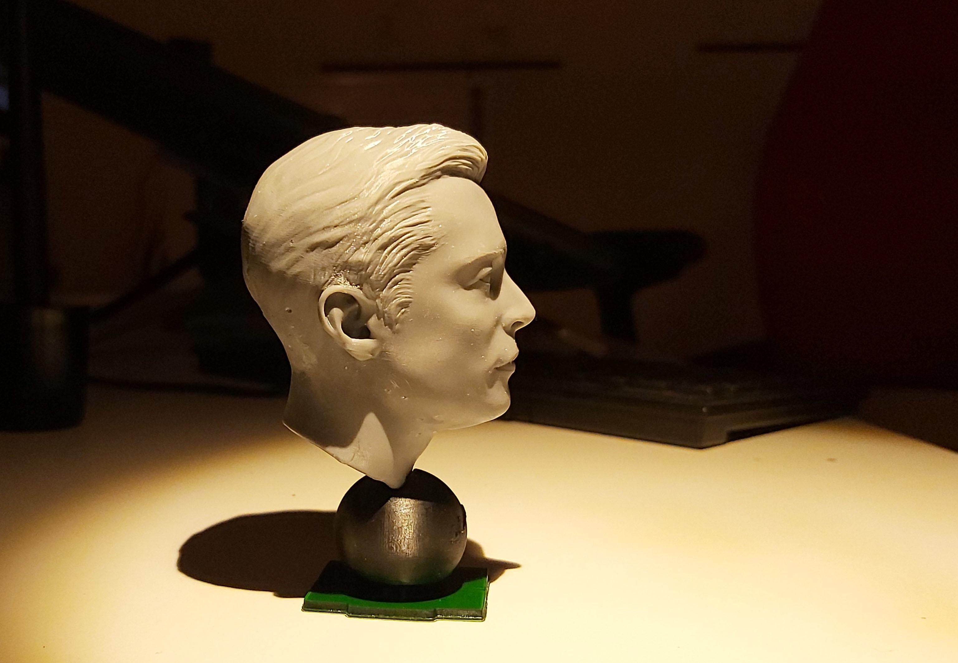 20191220_193607.jpg Télécharger fichier STL gratuit Musc Elon • Design imprimable en 3D, tutus