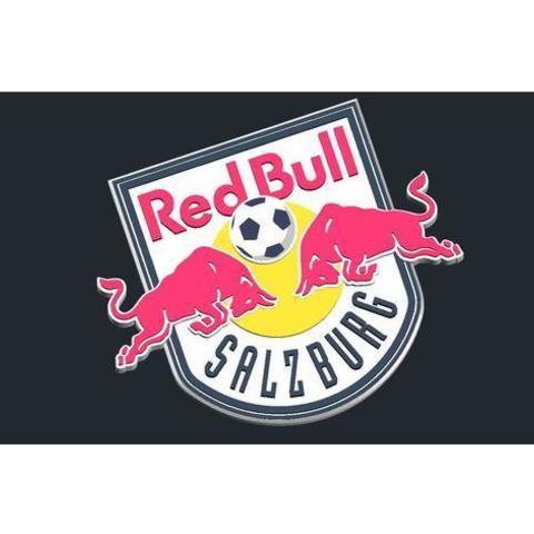 Free stl files FC RedBull Salzburg - Logo, CSD_Salzburg