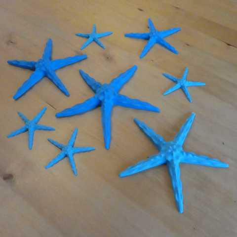 P1160762_2.jpg Download free STL file Starfish • 3D printer object, phipo333