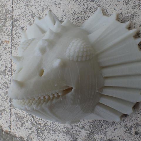 P6254224.jpg Download free STL file Head of Dragon • 3D print template, phipo333