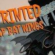 Télécharger fichier imprimante 3D gratuit Lace Up Bat Wings, amiedd