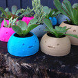Download free STL Happy Planters, XYZWorkshop