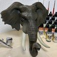 Download STL file Elephant  Head, SimDev