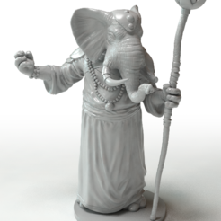 Download 3D printer files Elephant Wizard, Zandoria
