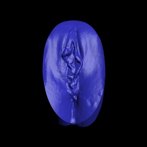 vscan2-2.png Download STL file Vagina Scan #2 • 3D printer object, 3d-v-scan