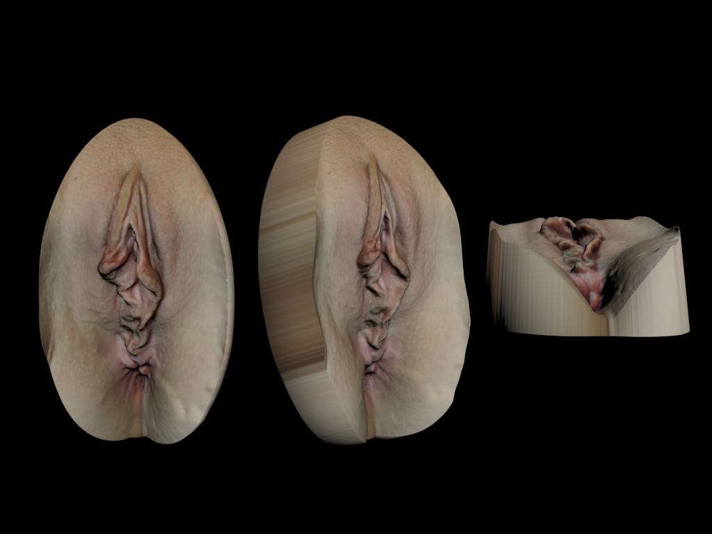 vscan2-1.png Download STL file Vagina Scan #2 • 3D printer object, 3d-v-scan