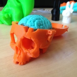 Free Boneheads: Skull Box w/ Brain - via 3DKitbash.com 3D model, Quincy_of_3DKitbash