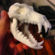 Free stl files BONEHEADS: Wolf Skull & Jaw Bone - PROMO - 3DKITBASH.COM, Quincy_of_3DKitbash