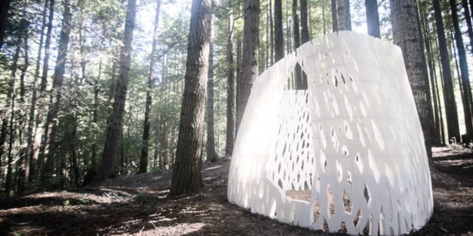 Echoviren, the first architectural structure realized in 3D