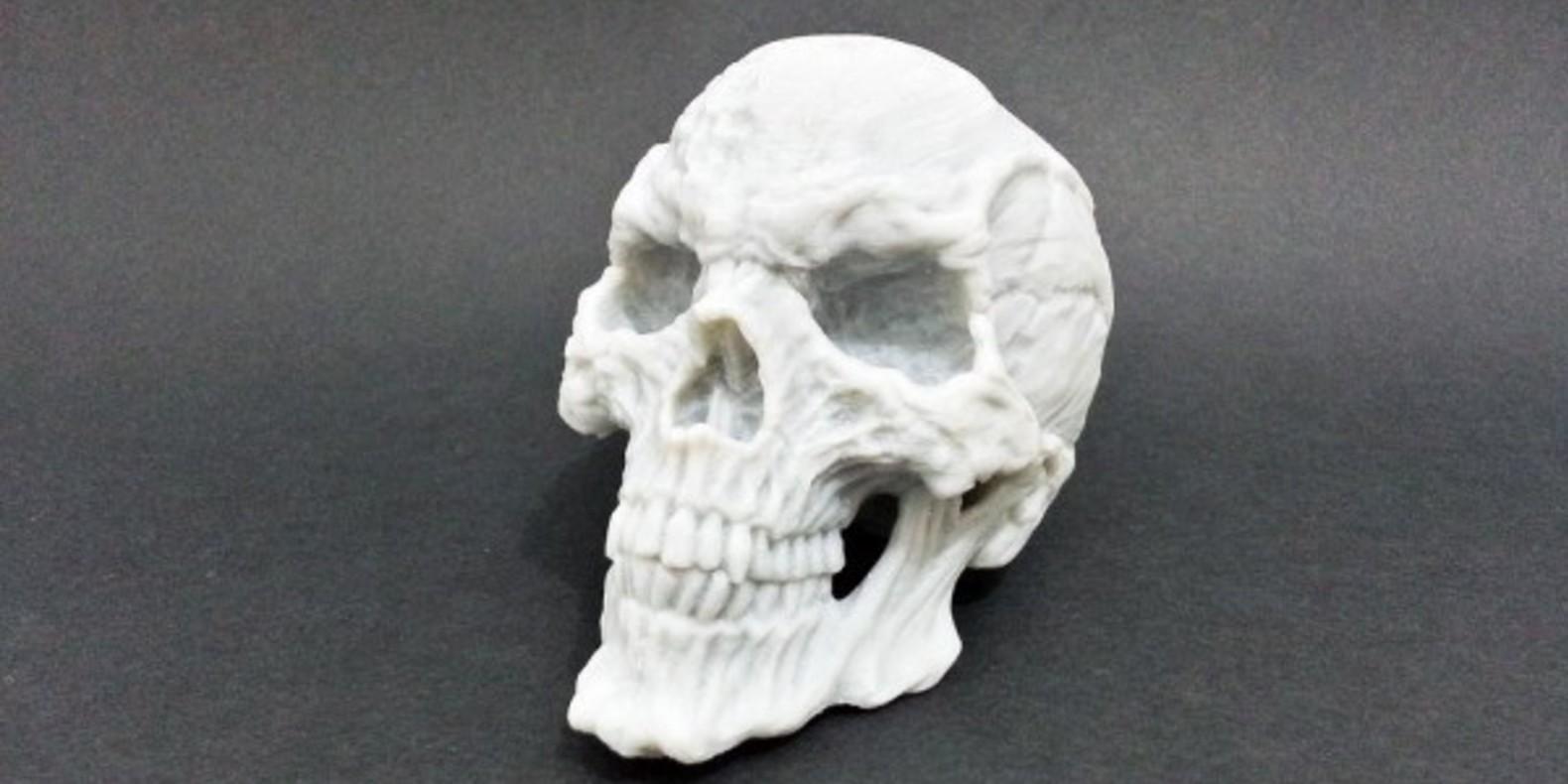 6.1 Horror Skull - Kfir - Cults crânes imprimés en 3D