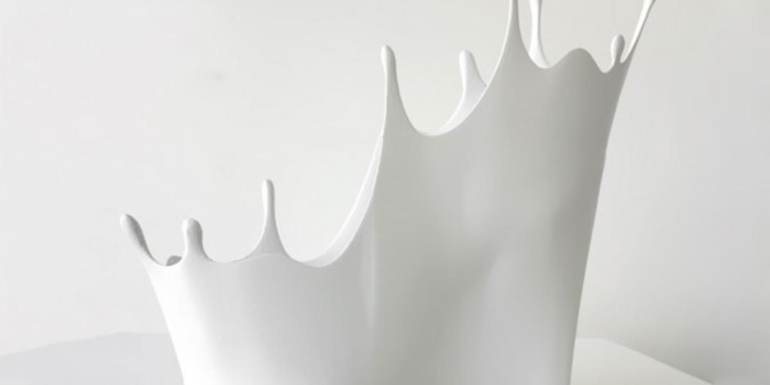 sebastian errazuriz shoe 3D print cults chaussures imprimees en 3D makerbot melissa designer 3D 5