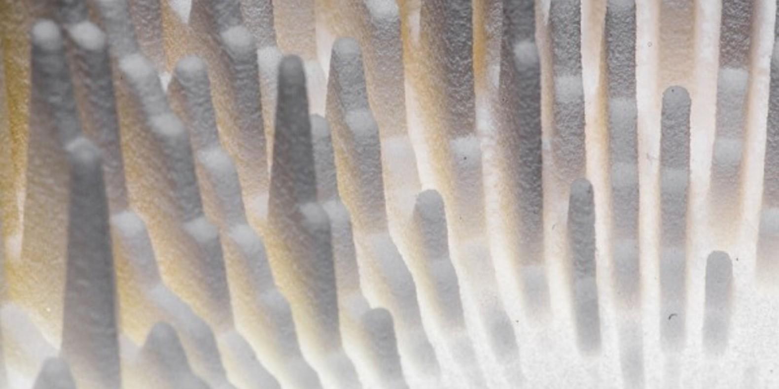 Lukasz Karluk holodecks 3D printing sound music sculpture design cults cults3D fichier 3D Zebra 5