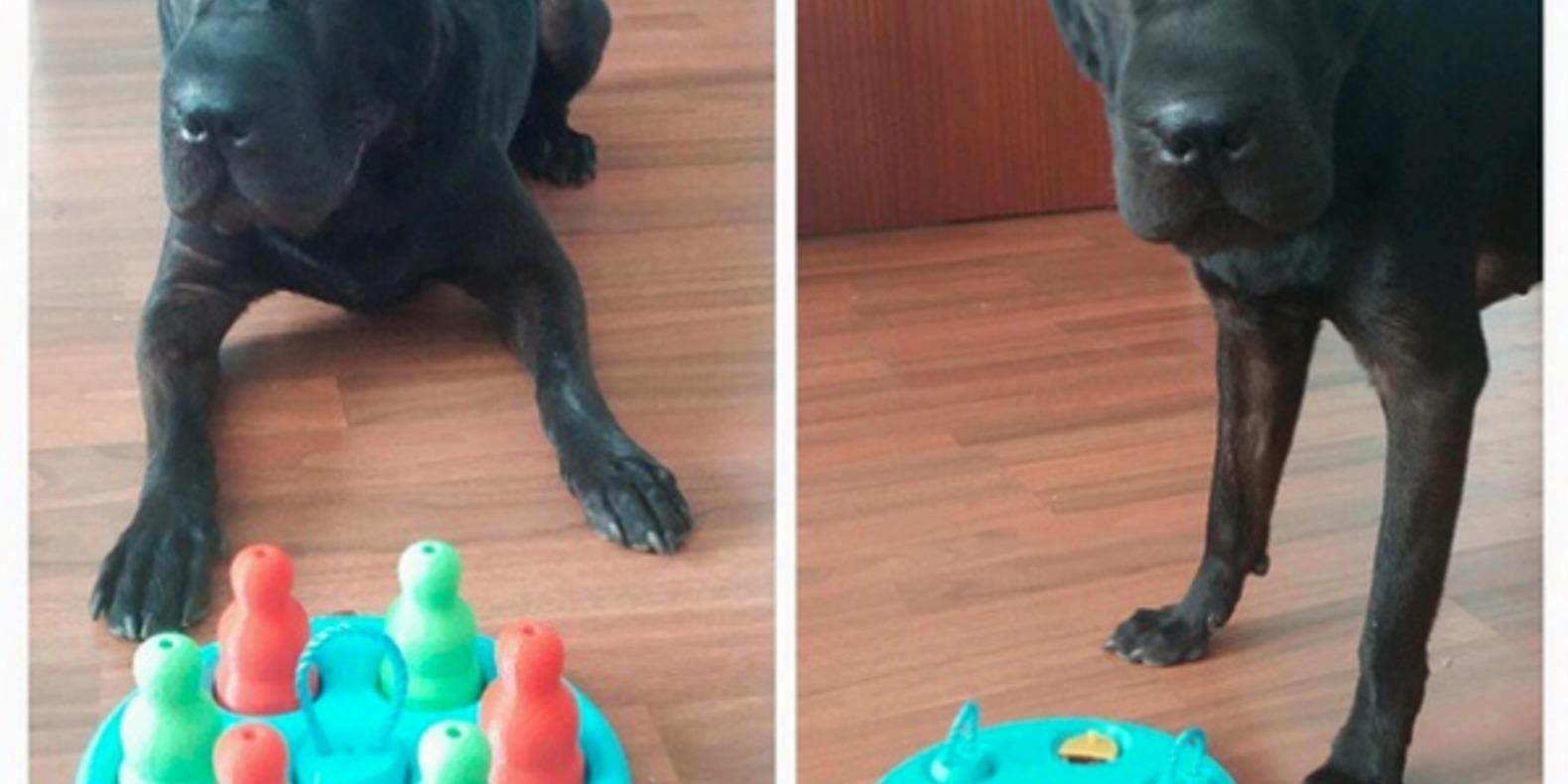 Dogs-game-Empezandodiseno-Cults-3Dprinting-6 jouet pour chiens imprimé en 3D