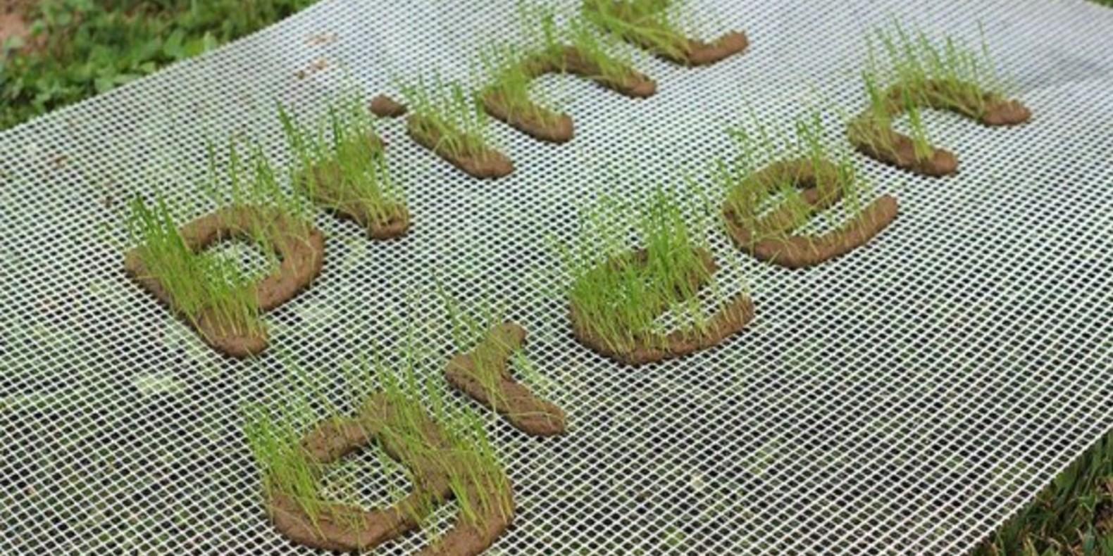 print green jardin imprime en 3D cults 3D printing grass5