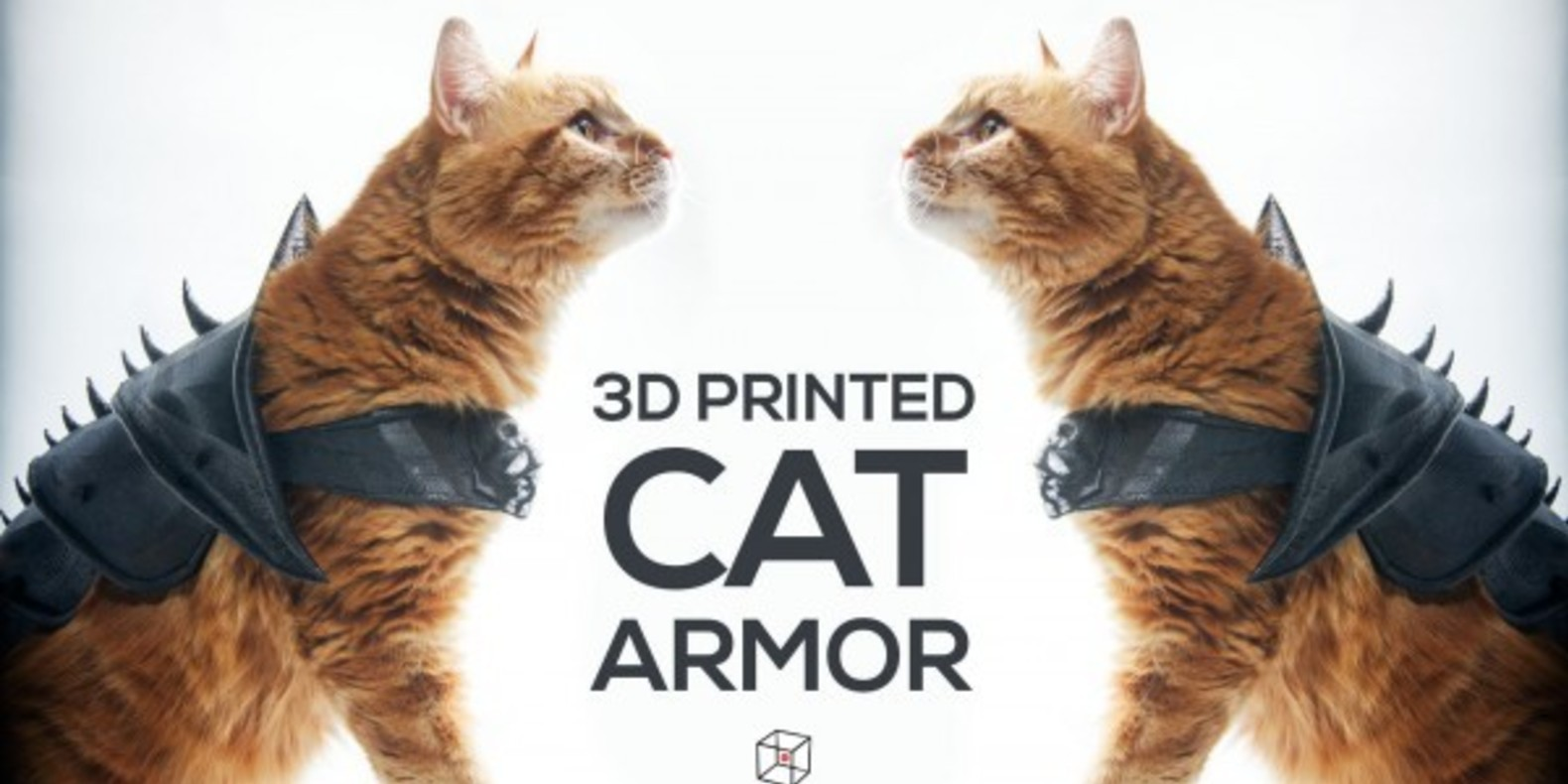 2 Armure pour Chat A