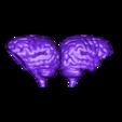 SkullBox_Brain_3DKitbash.stl Download free STL file Boneheads: Skull Box w/ Brain - via 3DKitbash.com • Model to 3D print, Quincy_of_3DKitbash