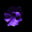 Flower Petal Base.stl Download free STL file Daisy - Flat flower • 3D printable template, mag-net