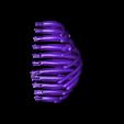 TRex_Ribs_Left.stl Télécharger fichier STL gratuit T-Rex Skeleton - Leo Burton Mount • Objet à imprimer en 3D, LordLilapause