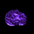 antsimp.stl Download free STL file Ape Skull • 3D printable template, LordLilapause