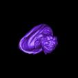 anne_marie_update2-simp500K1Z.stl Télécharger fichier STL gratuit Buste d'Anne-Marie-Louise Thomas de Domangeville de Sérilly, Comtesse de Pange • Objet pour impression 3D, 3DLirious