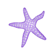 Starfish stl.stl Download STL file Starfish Voronoi • 3D printer object, Majs84