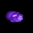 FionaPrincess-half.stl Download free STL file Shrek - Fiona Princess • 3D printing model, quangdo1700