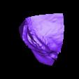 GADGETs head  pt2.stl Download free STL file GADGET the robotic Gremlin • 3D printing object, atarka3