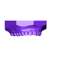 Maxillary.stl Download OBJ file Digital Orthodontic Study Models with Virtual Bases • Design to 3D print, LabMagic3DCAD