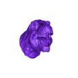 T-rex_HightPolygon_1.stl Download OBJ file T-rex Tyrannosaurus • 3D printable object, Dynastinae