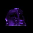 Gorilla Back.stl Download STL file HIGH RESOLUTION REPLICA SCAN GORILLA SKULL FULL SIZE • Model to 3D print, Anthrobones