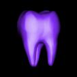 Tooth-02.obj Download 3DS file Tooth • 3D printer design, Skazok