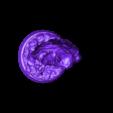 DRUID.stl Download STL file Druid • Model to 3D print, pumpkinhead3d
