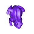 frog.stl Download free STL file A frog • 3D printing design, pumpkinhead3d