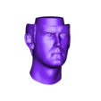 cleese_head.obj Download free OBJ file John Cleese • Model to 3D print, Toshi_TNE