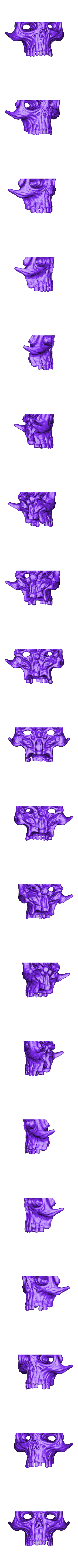 surturs-crown-skullbtm.stl Download free STL file Surtur crown (chopped into bits) • 3D printable object, durge990