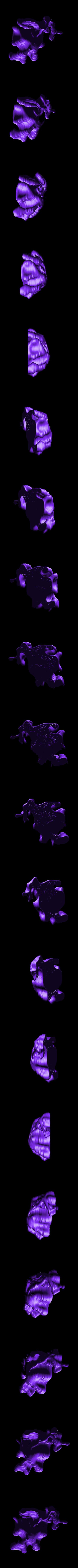 dragoncoral3.stl Download free STL file Weird terrain collection • 3D printer object, ferjerez3d