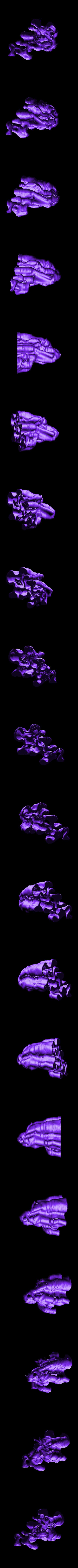gro4.stl Download free STL file Weird terrain collection • 3D printer object, ferjerez3d